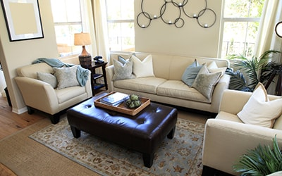 Couch & Upholstery cleaning Naples FL